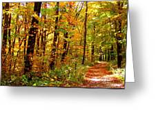 Red Run Trail Greeting Card by Ed Smith