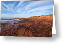 Red Sands Low Tide Greeting Card