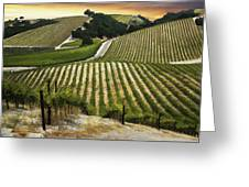 Red Soles Vineyard Greeting Card
