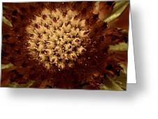 Red Tips Greeting Card