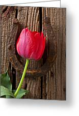 Red Tulip And Horseshoe  Greeting Card