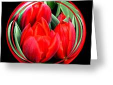 Red Tulips Under Glass Greeting Card
