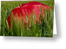 Red Umbrella On The Wheat Field Greeting Card