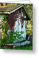 Red Vine Shed Greeting Card