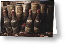 Red Wine Bottles, Covered With Mold Greeting Card by James L. Stanfield