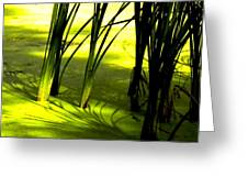 Reeds In Pond Greeting Card