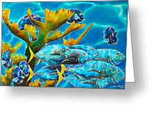Reef Fish Greeting Card by Daniel Jean-Baptiste