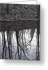 Refection Greeting Card
