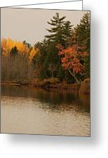 Reflecting On Autumn Greeting Card