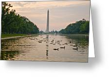 Reflecting Pool And Ducks Greeting Card