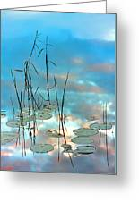 Reflection - Reeds And Pond Lilies Greeting Card