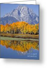 Reflection At Oxbow Bend Greeting Card