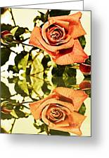 Reflection Of A Warm Rose Greeting Card