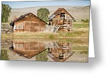 Reflection Of An Old Building Greeting Card by Donna Greene