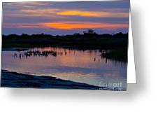 Reflection Of The Sunset Greeting Card