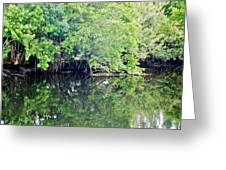 Reflection On The North Fork River Greeting Card