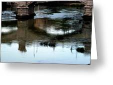 Reflection Tevere Greeting Card