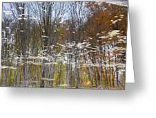 Reflections 4 Greeting Card