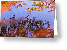 Reflections And Currents Greeting Card