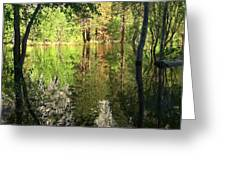 Reflections In The Merced Greeting Card