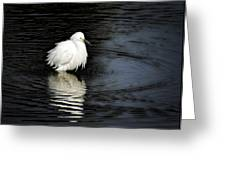 Reflections Of An Egret  Greeting Card