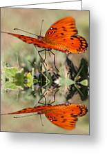 Reflections Of The Gulf Greeting Card