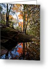 Reflections On Acadia Greeting Card