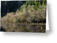Reflections On Marshall Pond Greeting Card