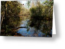Reflective River Thoughts Greeting Card