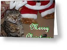 Reindeer Dreams Greeting Card