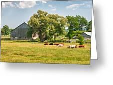 Reive Blvd Barn 15059c Greeting Card