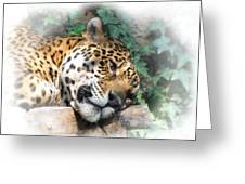 Relaxing 2 Greeting Card