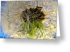 Releasing Seeds Greeting Card