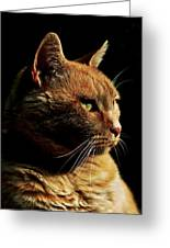 Remo On Black Greeting Card