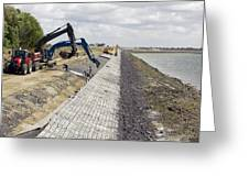 Renewing Shore Defences, Netherlands Greeting Card by Colin Cuthbert