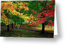 Reno Park - Autumn Greeting Card