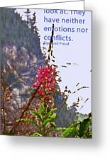 Restful Flowers Greeting Card