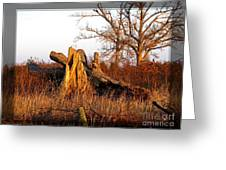 Resting Giant Greeting Card