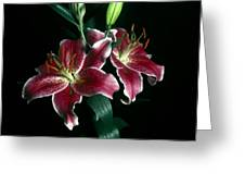 Reuben Lillies Greeting Card
