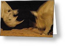 Rhino Clash Greeting Card