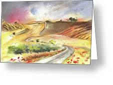 Ribera Del Duero In Spain 11 Greeting Card
