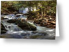 Ricketts Glen State Park Greeting Card