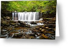Ricketts Glen Waterfall Oneida Greeting Card
