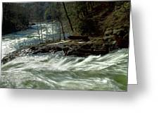 Riding The River Greeting Card
