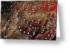Ring-necked Pheasant Phasianus Greeting Card