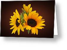 Ring Of Sunflowers Greeting Card
