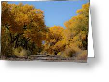 Rio Grande Cottonwoods Greeting Card by Denice Breaux