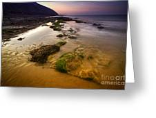 Rising Tides Greeting Card