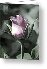 Rita Rose Greeting Card
