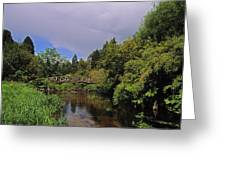 River Awbeg, Annesgrove Greeting Card
